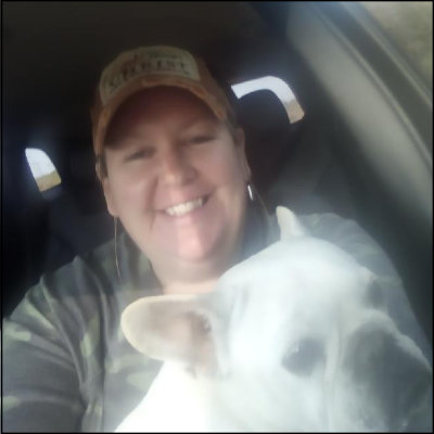 tracy-hicks-animal-clinic-of-experts